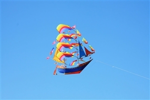 Beautiful Kite in Sky During Makar Sankranti Festival HD Photo