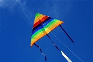 Colorful Kite During Uttarayana Festival Wallpaper