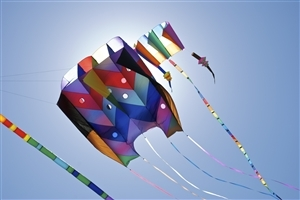 Different Style Kites on Makar Sankranti Indian Festival Wallpapers