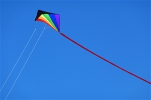 Happy Makar Sankranti Festival Flying Kites on Sky Wallpapers