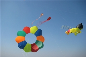 Happy Makar Sankranti HD Photo