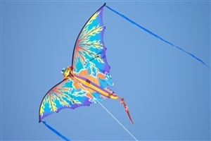 Kite in Sky Photo Background