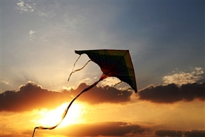 Makar Sankranti Kite During Sunset Wallpapers