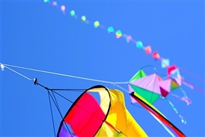 Stylish Kite Row in Sky HD Photo Background