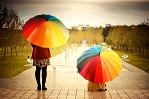 Rainbow Color Umbrella on Monsoon Season Wallpaper