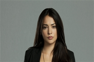 Hollywood Film Actress Natalie Martinez Wallpapers