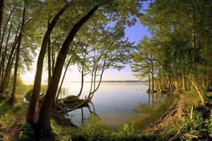 Beautiful Lake and Nature Image