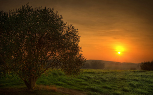 Beautiful Nature Sunset View of Dartmoor National Park in England UK Wallpapers