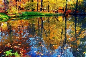 Beautiful Nature Water Reflection HD Wallpaper