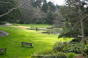 Beautiful Royal Botanic Gardens Melbourne in Australia Country HD Wallpaper