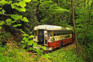 Bus Scrap in Nature Jungle
