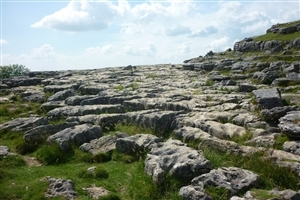 Nature Photo Malham Cove North Yorkshire England