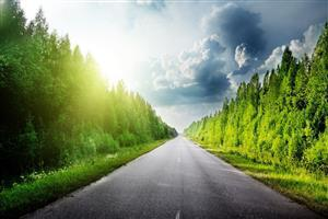 Nature Road Wallpaper