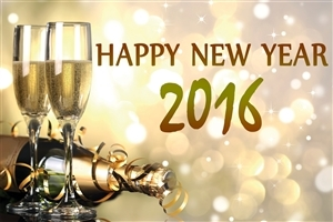 Happy New Year 2016 Champagne Bottle and Bear Glass Desktop Background Wallpapers