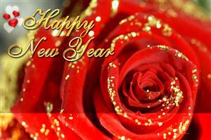 Happy New Year Red Rose Wallpaper