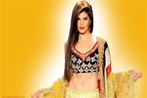 Jacqueline Fernandez in Saree Wallpaper