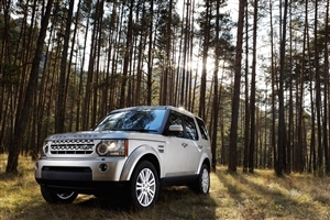 Land Rover Car in Jungle HD Wallpaper