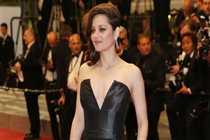 Beautiful Marion Cotillard 2018 HD Wallpapers
