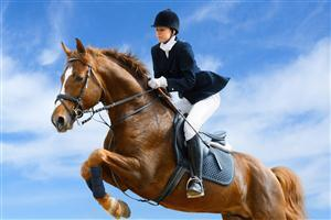 Horse Riding Wallpapers