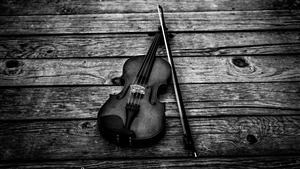 Violin Black and White Music 4K Photo