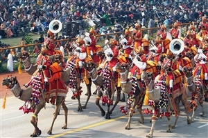 Delhi Republic Day Camel Parade Photos