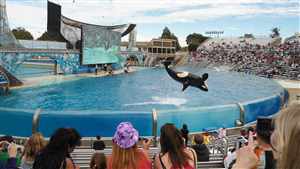 SeaWorld San Diego California 4K Travel Pic
