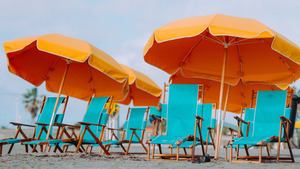 Deck Chairs and Umbrellas Sandy Beach Wallpaper