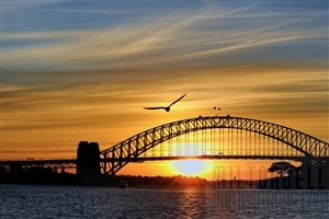 Beautiful Sunset at Sydney Harbour Bridge Australia 4K Wallpapers