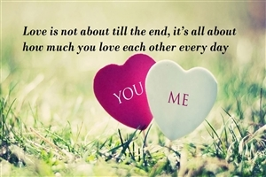 New Love Quote Wallpaper Background Hd Wallpapers