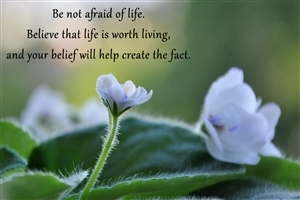 Beautiful Thought on Life Wallpaper