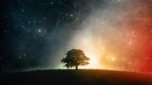 Space Tree Fantasy HD Wallpapers