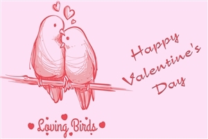 Loving Bird Valentines Day HD Image Background