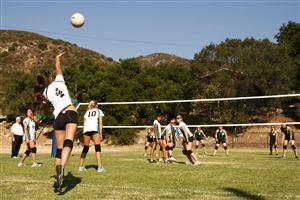Volleyball in Garden Wallpapers