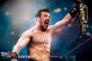 WWE Sheamus with Belts