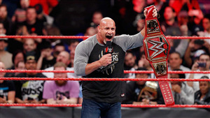 WWE Superstar Bill Goldberg