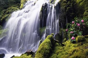 Beautiful Waterfall of Manila Philippines Wallpaper