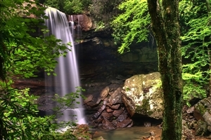 Waterfall in Jungle HD Photo