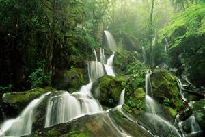 Waterfalls in Greenery Wallpaper
