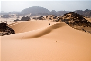 Amazing Dangerous Desert Nature HD Photos