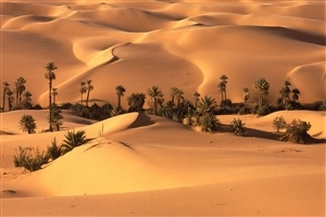 Beautiful Sahara Desert North Africa Wallpaper