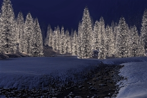 Night View of Winter Season Wallpaper