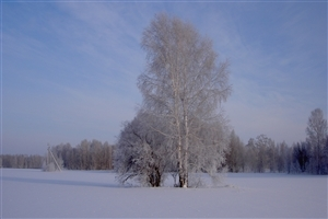 Wallpaper of Winter Season