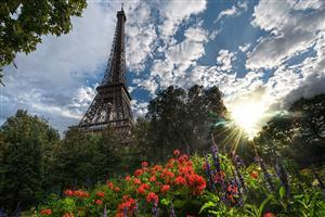 Wonders Eiffel Tower in Paris Wallpapers